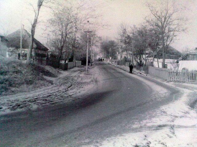 Золотоноша 1963 06