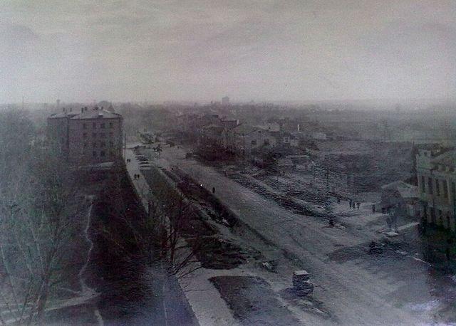 Золотоноша 1963