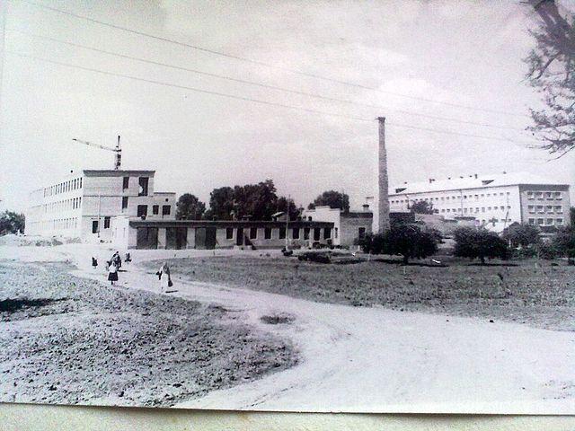будівництво санаторної школи інтернат