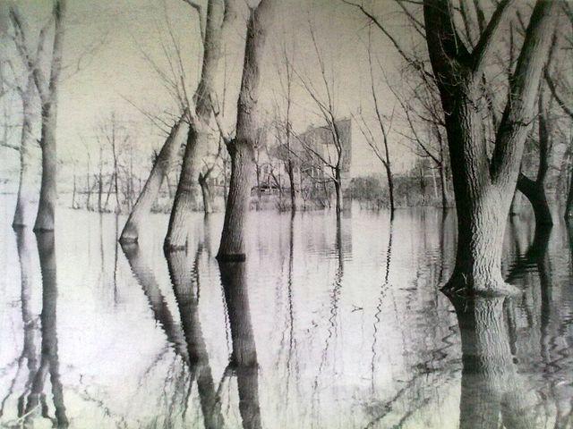 річка Золотоношка 02