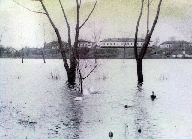 річка Золотоношка 03