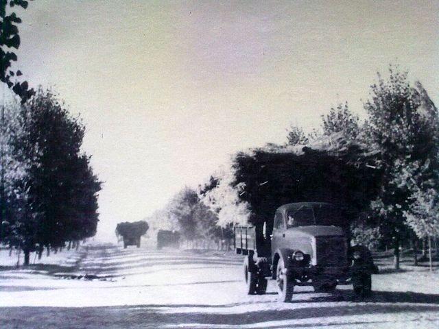 Золотоноша вулиця Шевченка 1963 07