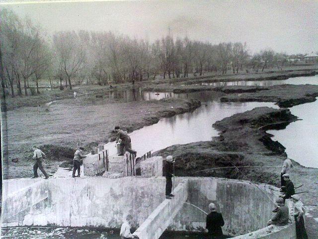 Річка Золотоношка